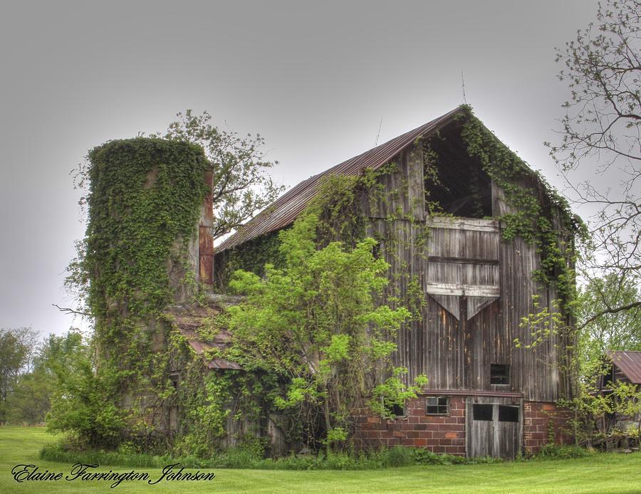 Barn and Silo  by Elaine Farrington Johnson