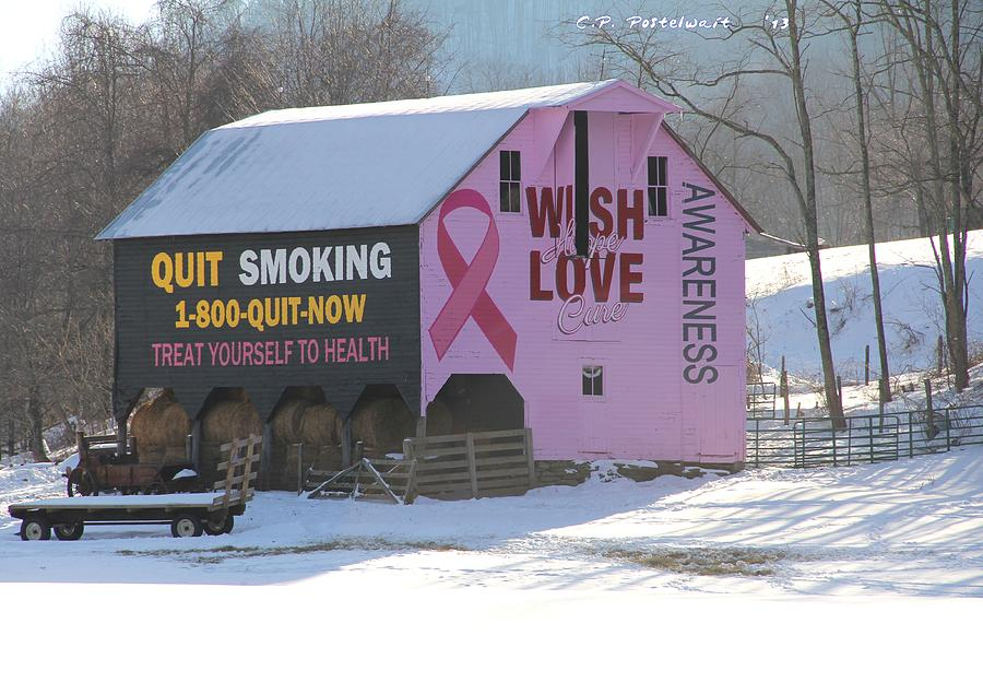 Breat Cancer Awareness Photograph - Barn For The Cure by Carolyn Postelwait