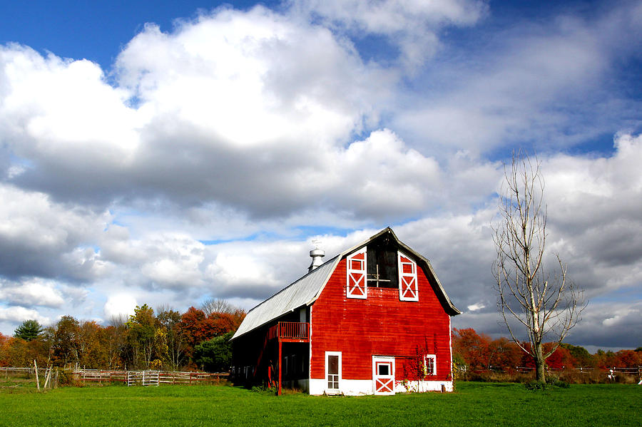 Barn Photograph - Barn by Frank Savarese