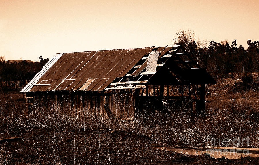 Barn Photograph - Barn Free by R McLellan