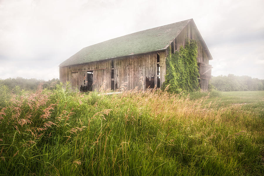 Barn in a misty field by Gary Heller
