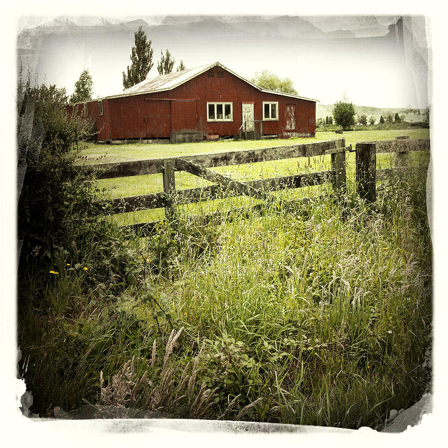Green Photograph - Barn In Field by Les Cunliffe
