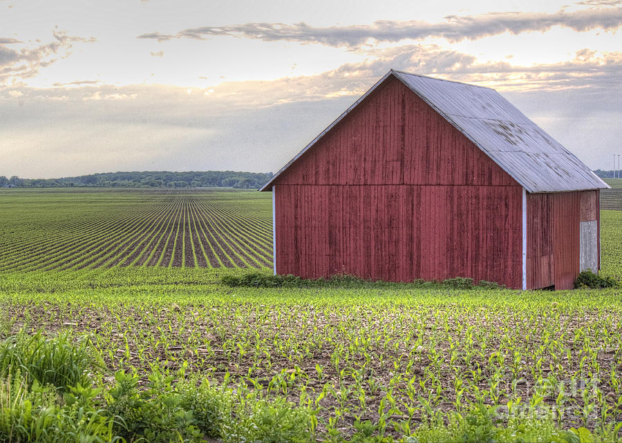 Barn Photograph - Barn Perspective by Kent Taylor