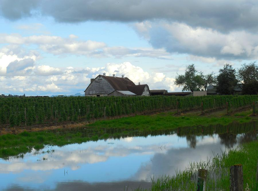 Barn Photograph - Barn Reflected In Pond  by Karen Molenaar Terrell