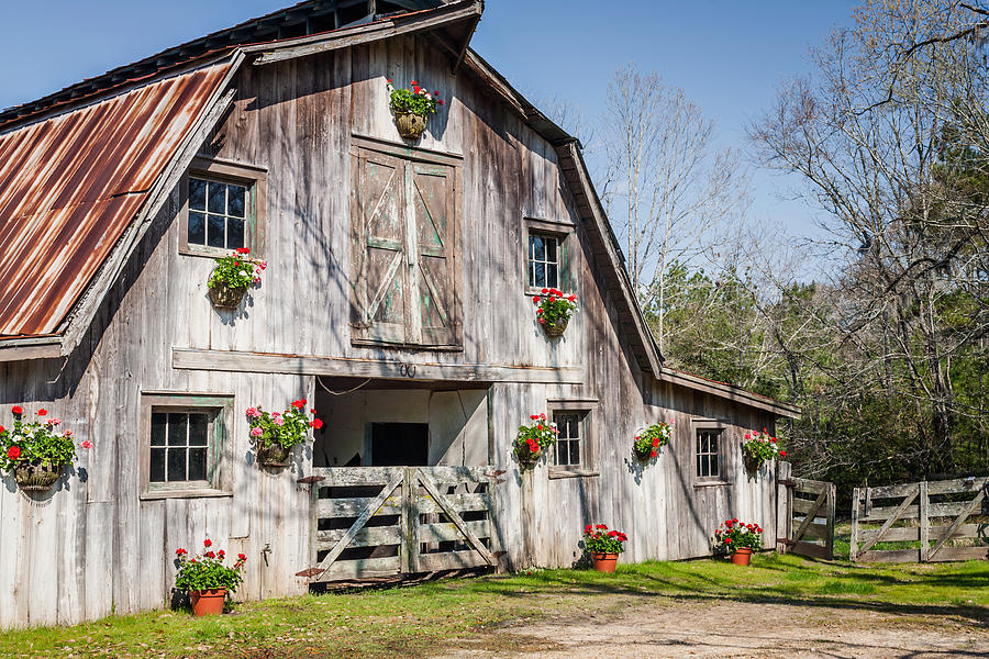 Barn Photograph - Barn With Flowers by Terry Ellis