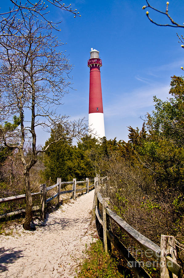 Lighthouses Photograph - Barnegat Lighthouse II by Anthony Sacco