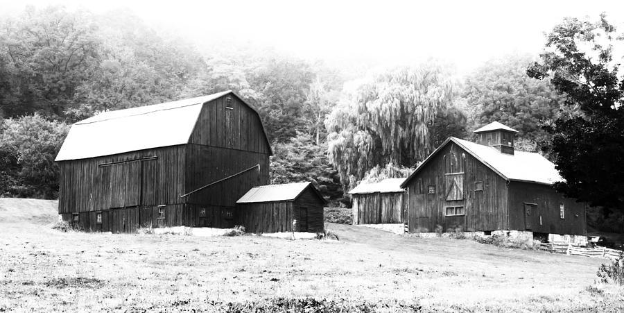 Barn Photograph - Barns   7d07740 by Guy Whiteley