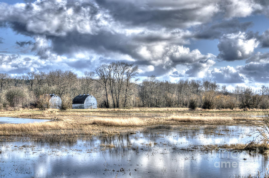 Barns on the Delta 1 by Sarah Schroder