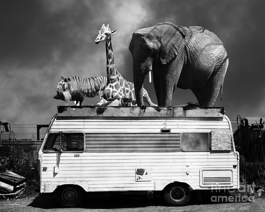Transportation Photograph - Barnum And Bailey Goes On A Road Trip 5d22705 Black And White by Wingsdomain Art and Photography