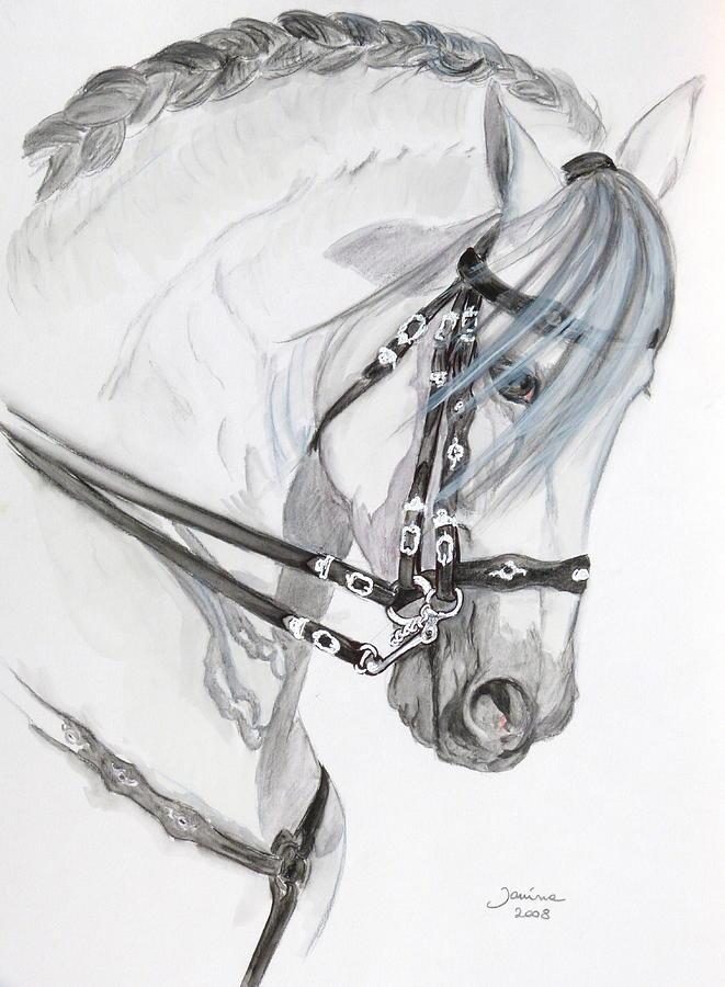 Acrylic Prints Painting - Baroque Horse by Janina  Suuronen