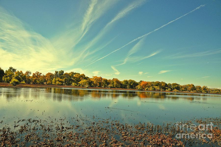 Barr Lake And Classic Cloud Photograph by Reza Mahlouji