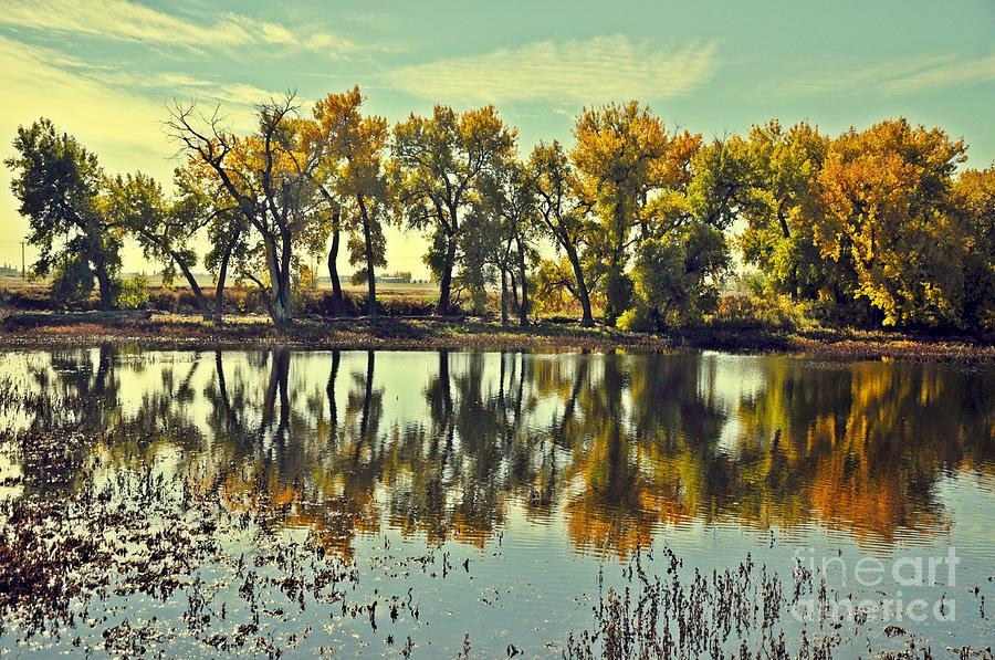 Barr Lake Reflection Photograph by Reza Mahlouji