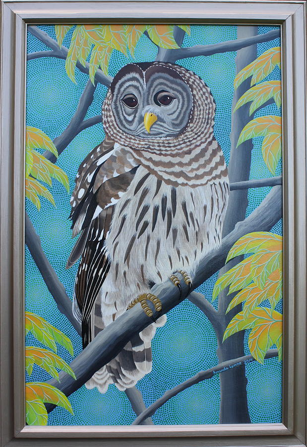Barred Owl by Amanda  Lynne