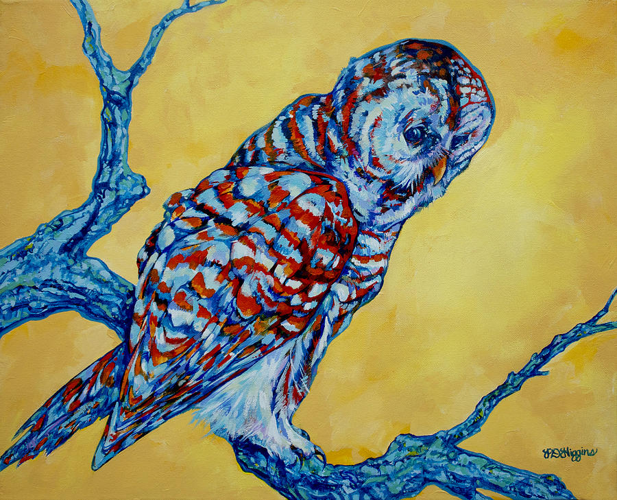 Owl Painting - Barred Owl by Derrick Higgins