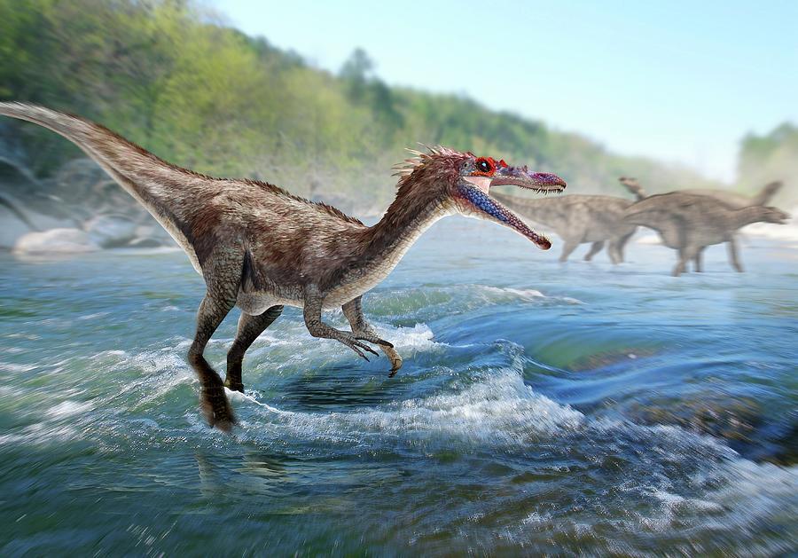 Baryonyx Photograph - Baryonyx Dinosaur by Jose Antonio PeÑas