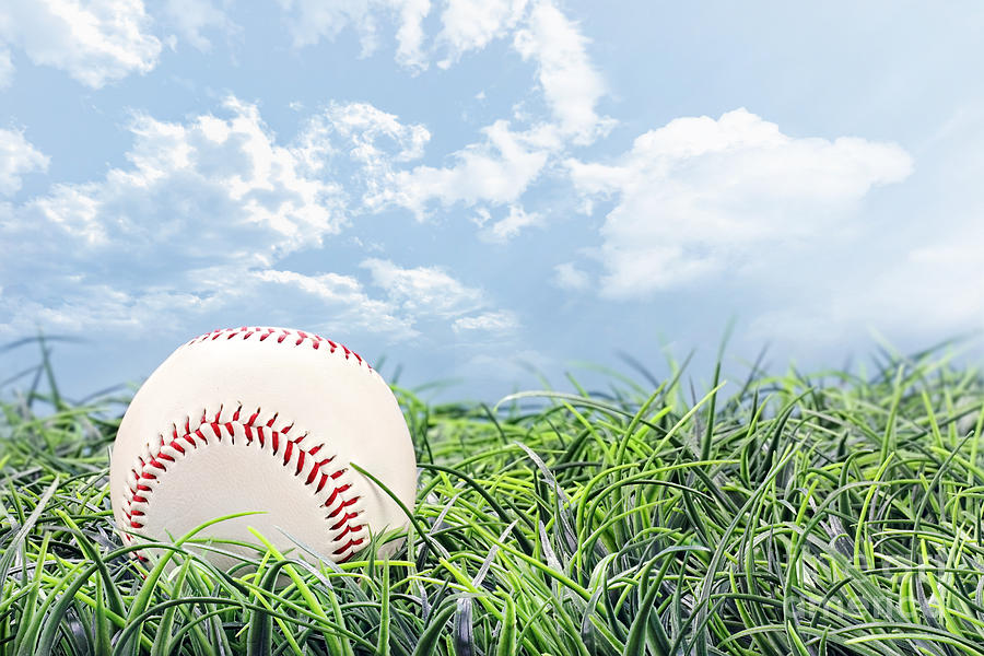 Baseball Photograph - Baseball In Grass by Stephanie Frey