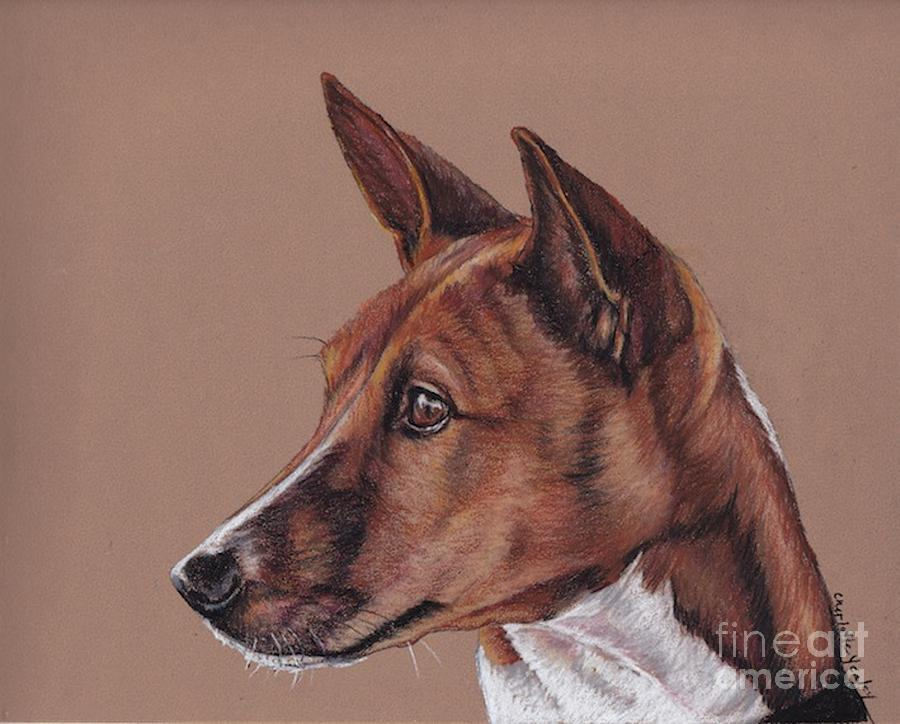 Pet Portrait Painting - Basenji by Charlotte Yealey