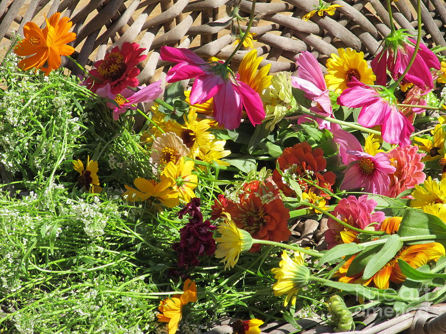 Basket Photograph - Basketful Of Flowers by Tina M Wenger
