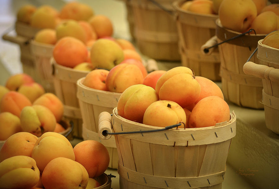 Summer Photograph - Baskets Of Apricots by Julie Palencia