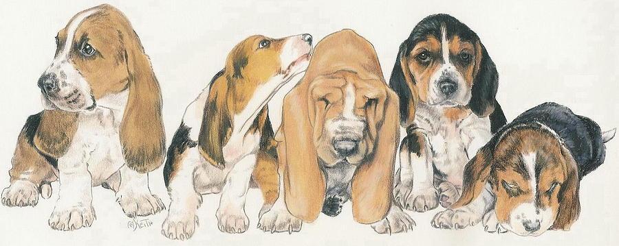 Basset Hound Mixed Media - Basset Hound Puppies by Barbara Keith