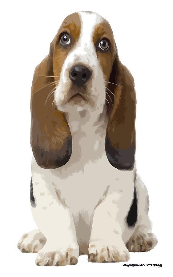 Puppy Digital Art - Basset Hound Puppy by Gabriel T Toro