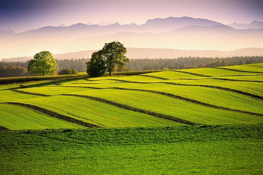 Bavaria Photograph - Bavaria by Bjoern Kindler