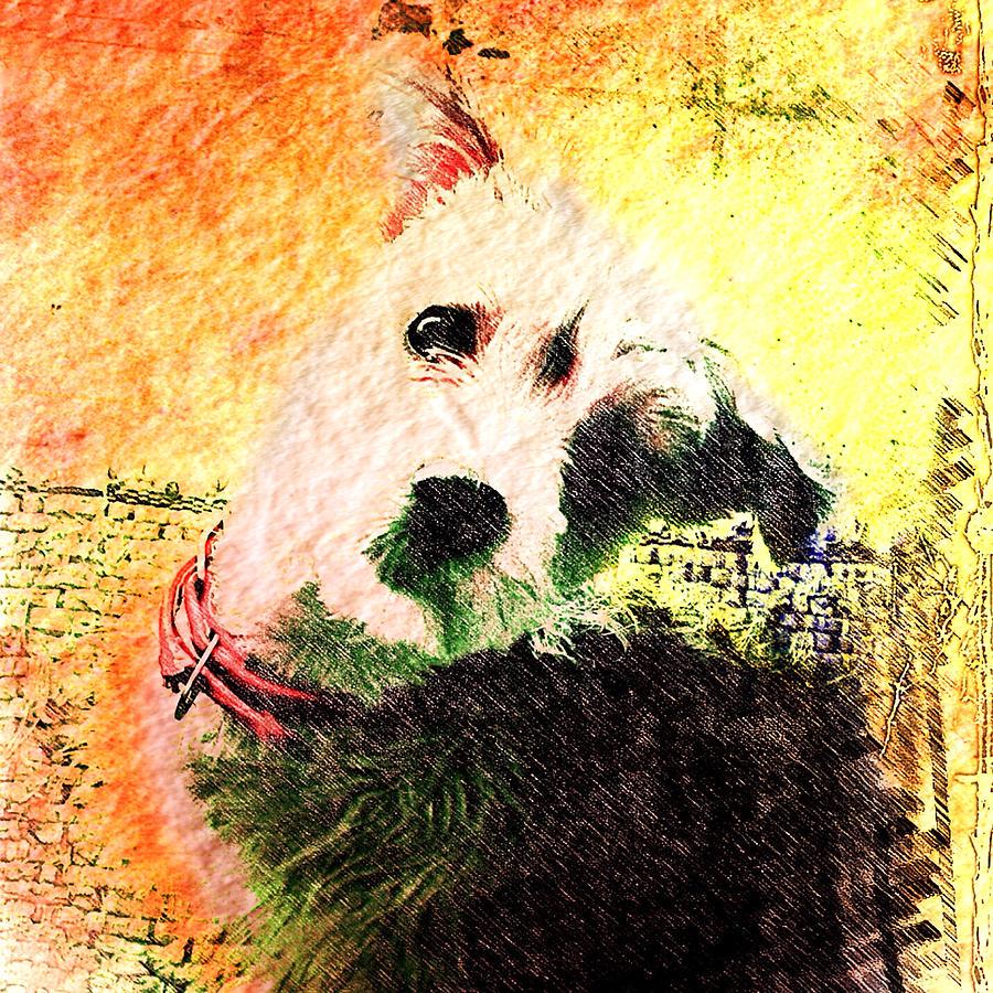 Puppy Mixed Media - Baxter by Kevyn Bashore