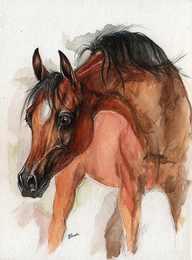 Horse Painting - Bay Arabian Foal Watercolor Portrait by Angel Ciesniarska