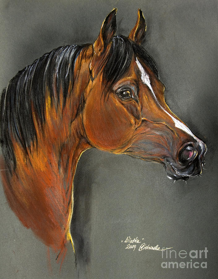 Horse Pastel - Bay Horse Portrait by Angel  Tarantella