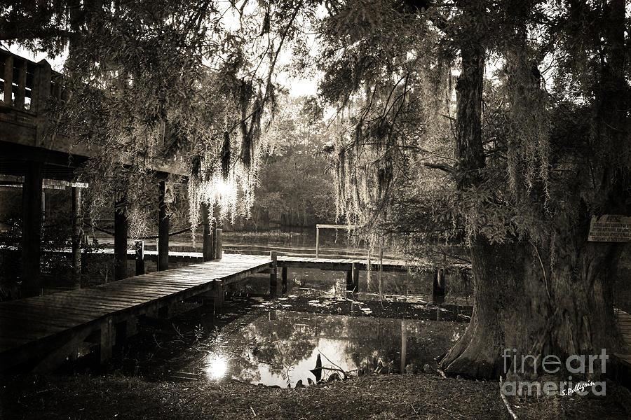 Swamp Photograph - Bayou Evening by Scott Pellegrin
