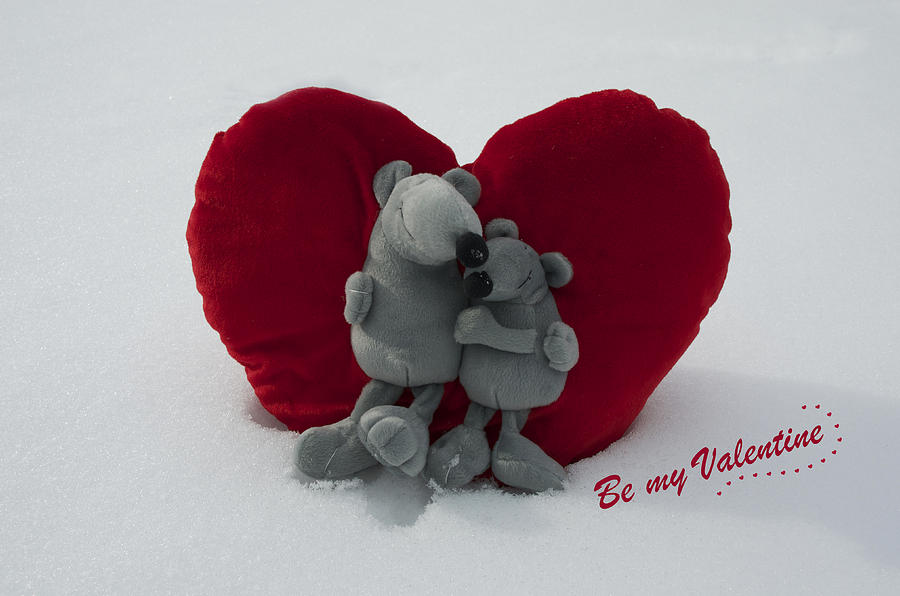 Love Photograph - Be My Valentine  by Nicole Markmann Nelson