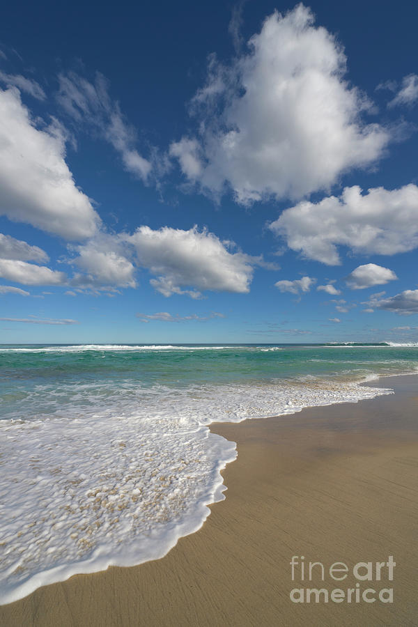 Beach And Cumulus Clouds Western Photograph by Yva Momatiuk and John Eastcott