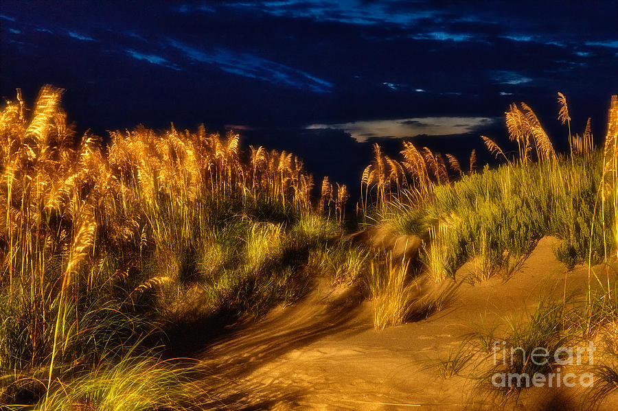 Ouber Banks Photograph - Beach At Night - Outer Banks Pea Island by Dan Carmichael