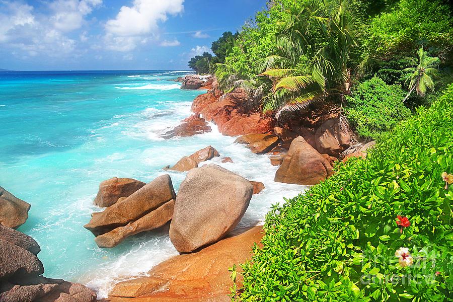 Beach Beauty Photograph - Beach Beauty by Boon Mee