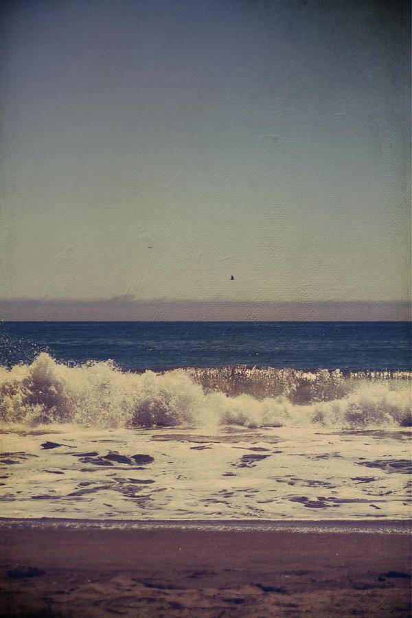Aptos Photograph - Beach Days by Laurie Search