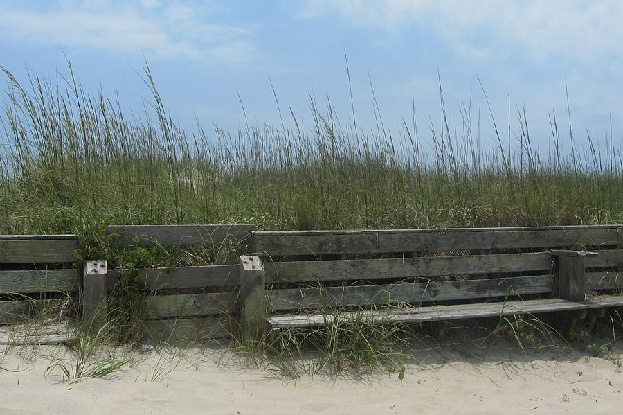Hatteras Photograph - Beach Grass And Bench  by Cathy Lindsey