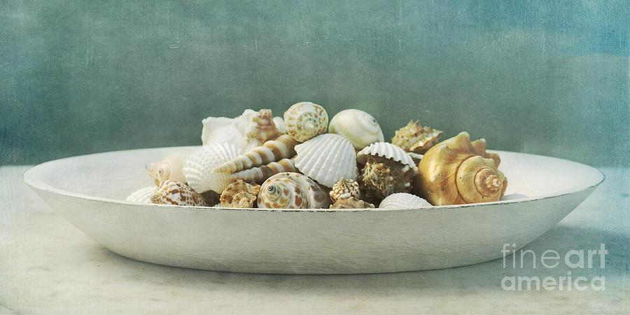 Marina Photograph - Beach In A Bowl by Priska Wettstein