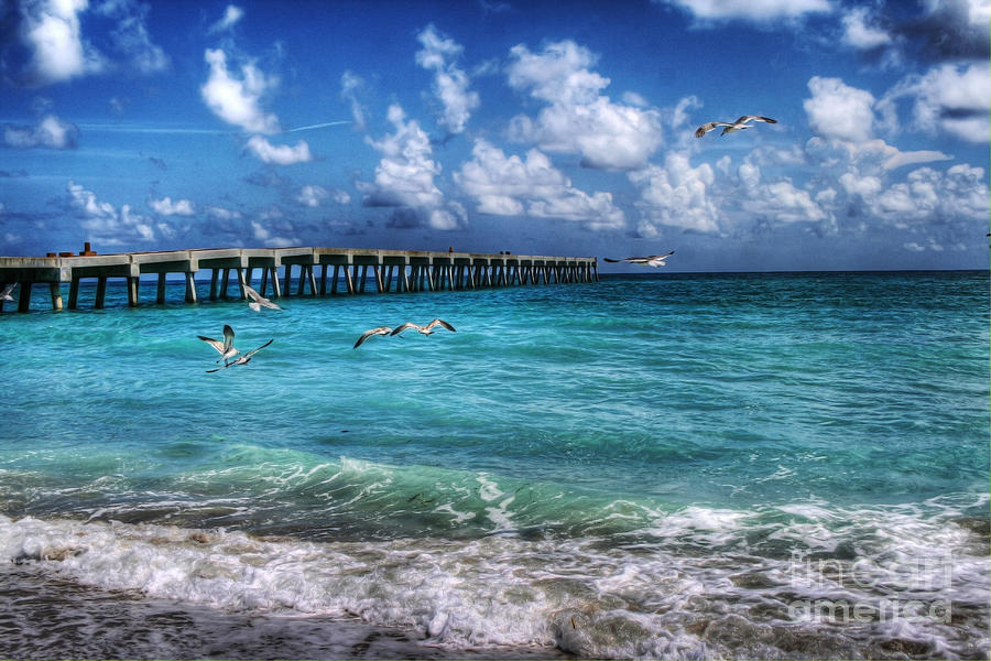Beach Photograph - Beach by Loyda Herrera