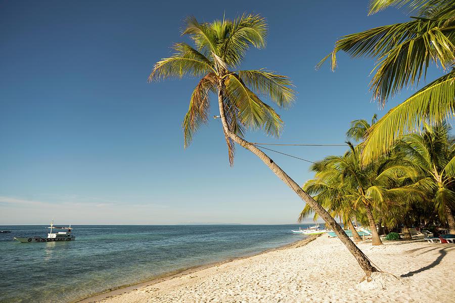 Beach On Malapasqua, Philippines Photograph by John Harper