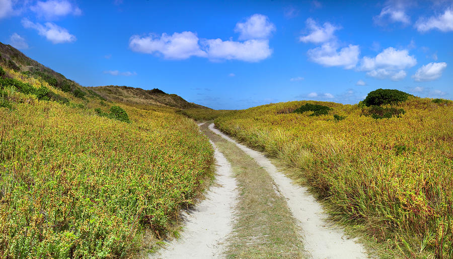 Coastal Scenes Photograph - Beach Road by Sean Davey