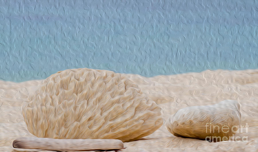 Grand Cayman Digital Art - Beach Rocks At Seven Mile Beach In Grand Cayman by Kenneth Montgomery