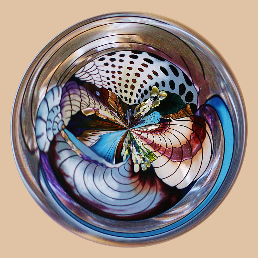 Orb Photograph - Beach Shell Orb by Paulette Thomas