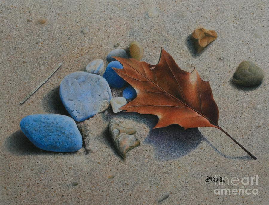 Beach Still Life II by Pamela Clements