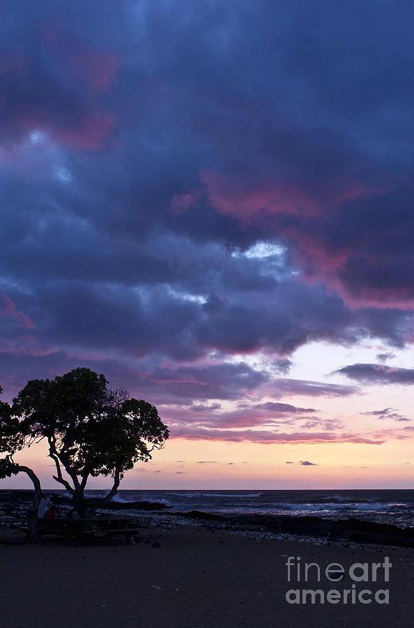 Landscape Photograph - Beach Sunset by Karl Voss