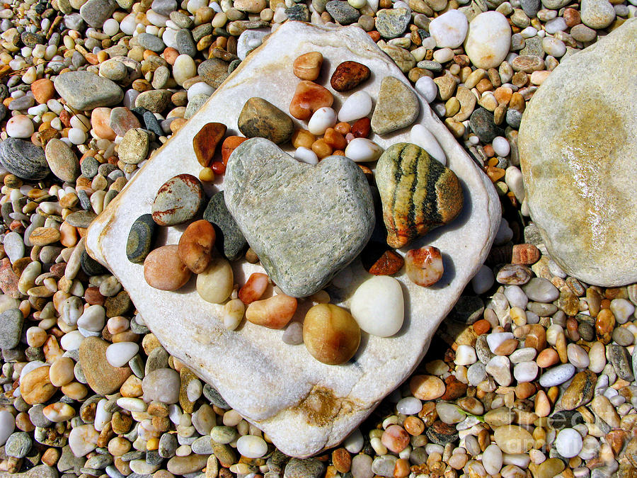 Pebbles Photograph - Beach Treasures by Daliana Pacuraru