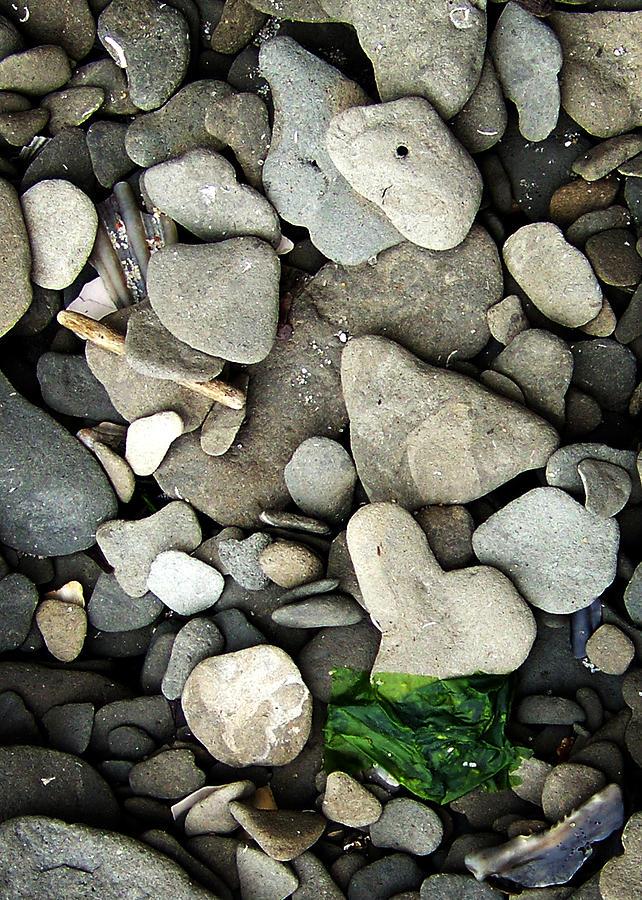 Beach Photograph - Beach Valentine by Rebecca Sherman