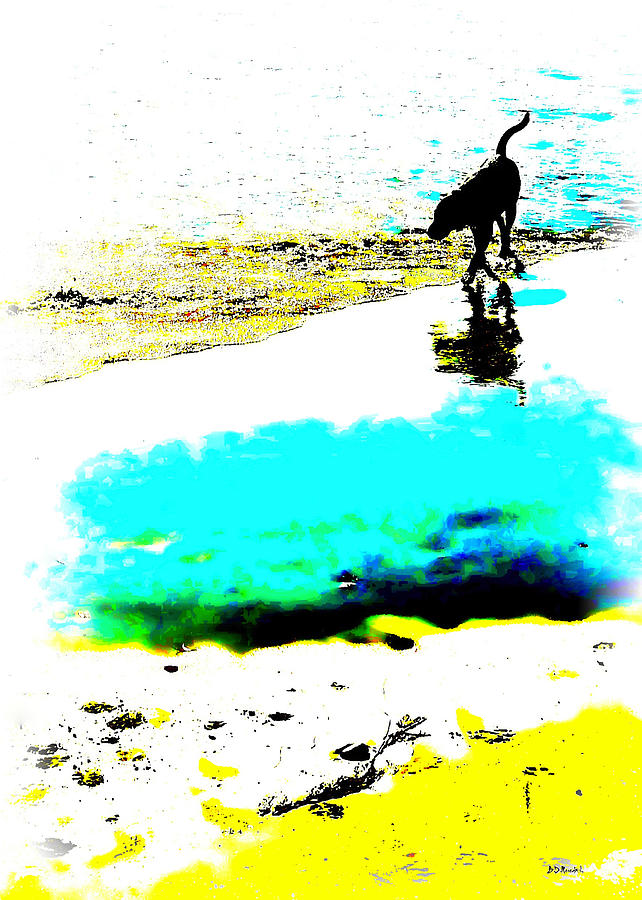 Abstract Digital Art - Beachcomber by Brian D Meredith
