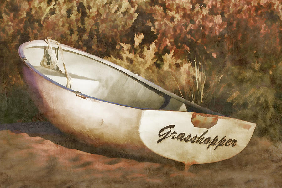 Rowboat Photograph - Beached Rowboat by Carol Leigh