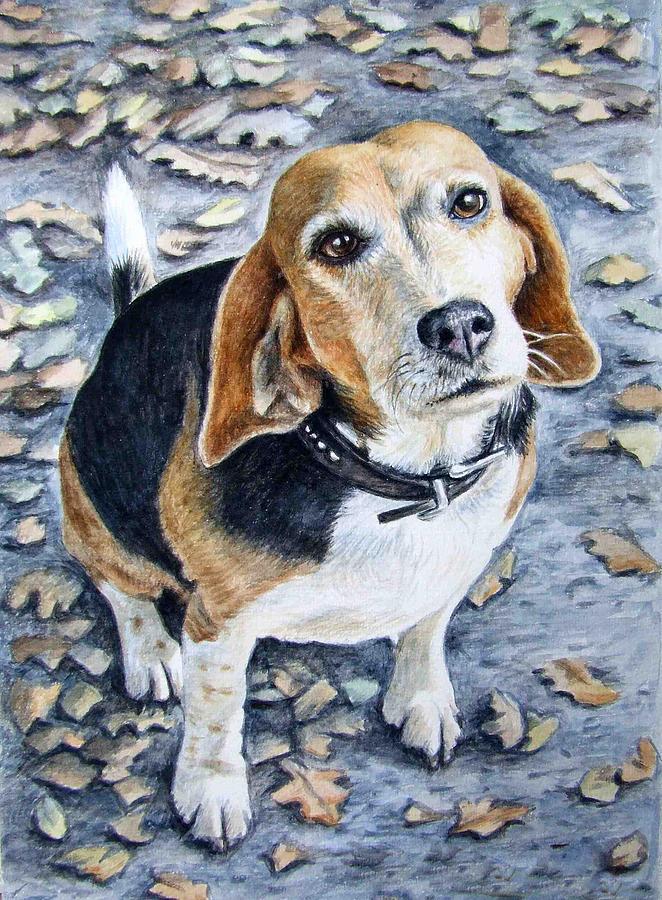 Dog Painting - Beagle In Autumn by Nicole Zeug
