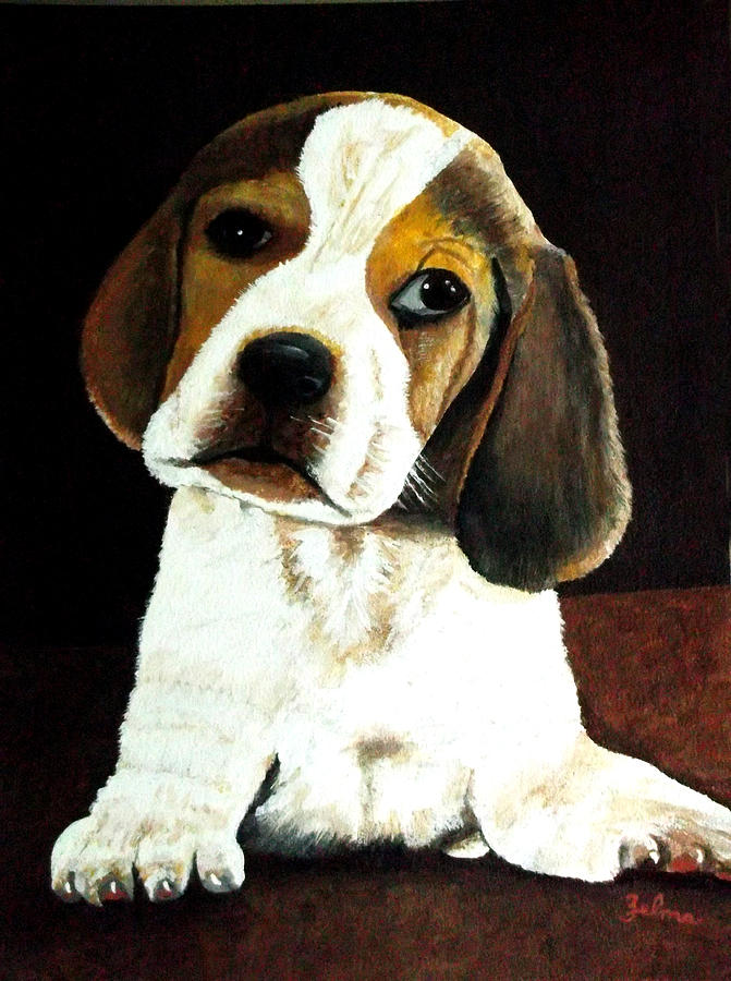 Puppy Painting - Beagle Puppy by Zelma Hensel